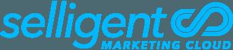 Market Espace certifié Selligent